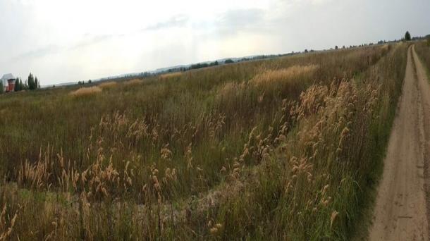 Земля 1000м2,  Раменское,  Центральная улица,  Егорьевское шоссе