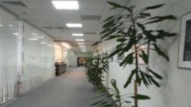 Офис 561.46м2, Ленинский проспект