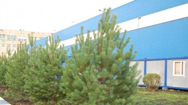 Офис 29.47м2, Серпуховская