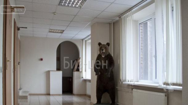 Офис (72 м²)